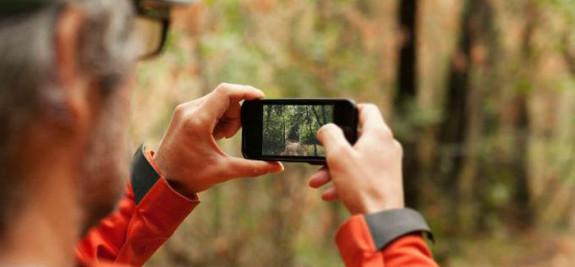 Concurso de Fotogrfía